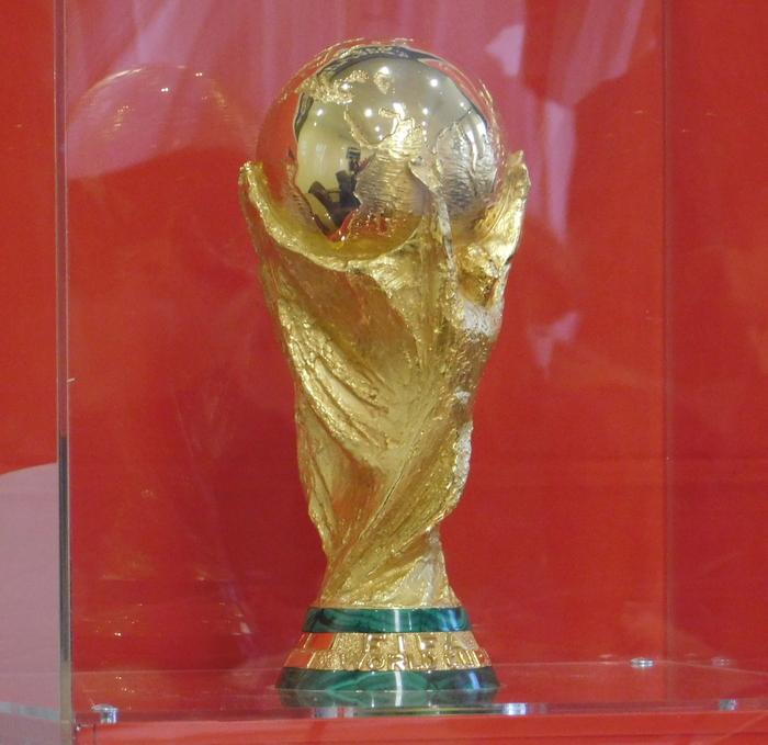 Кубок чемпионата мира пофутболу вначале осени посетил 4 города Российской Федерации